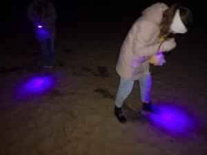 Ravlygte på strand - aktiviteter med børn